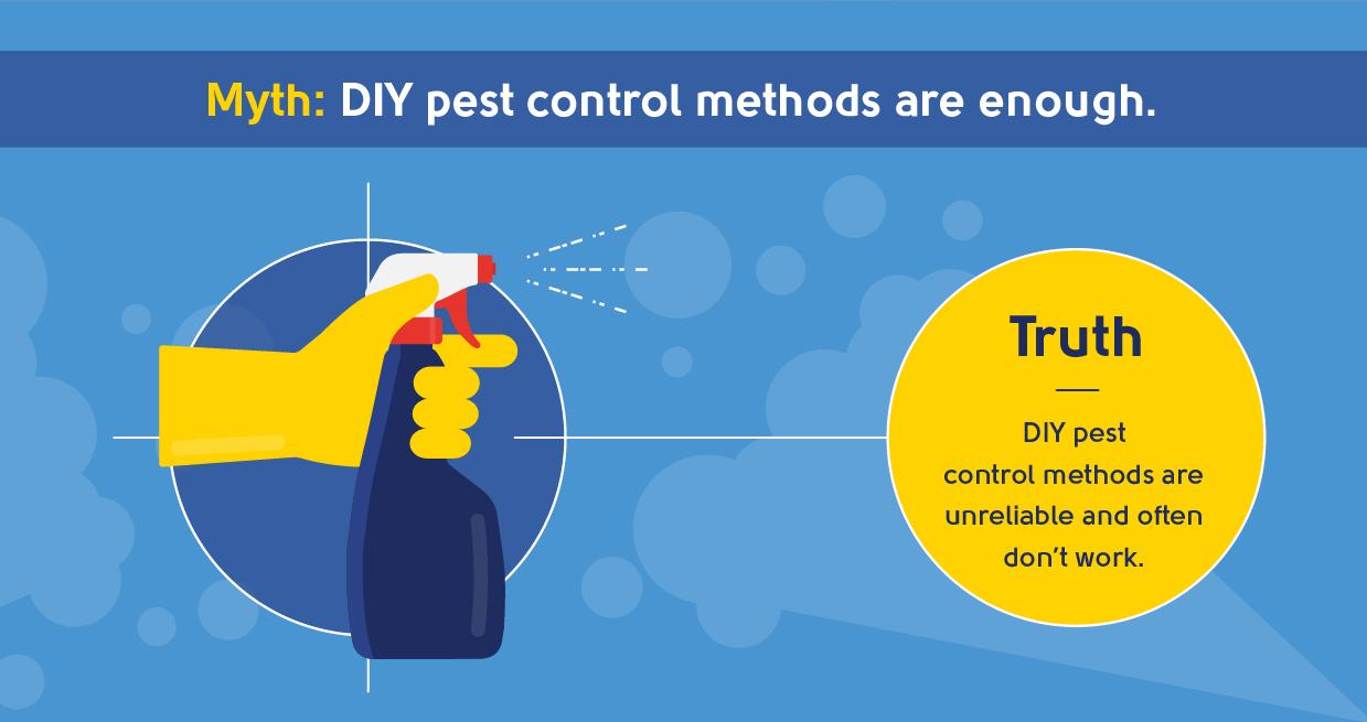 myth - DIY pest control methods are enough