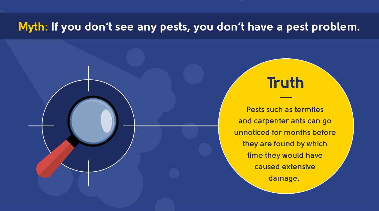 myth - if you don't see any pests, you don't have a pest problem